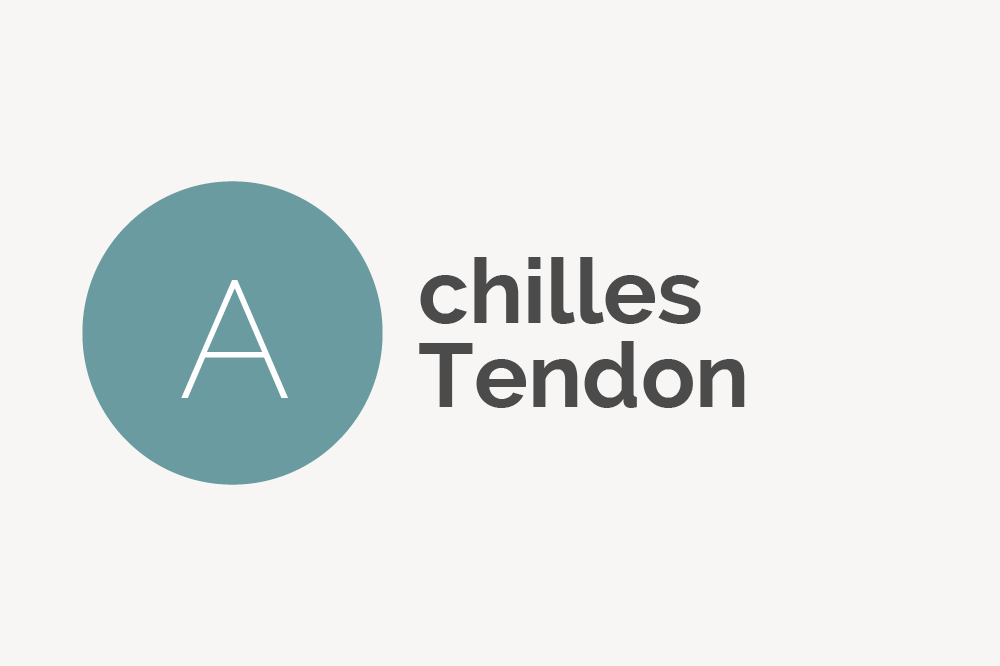 Achilles Tendon Definition