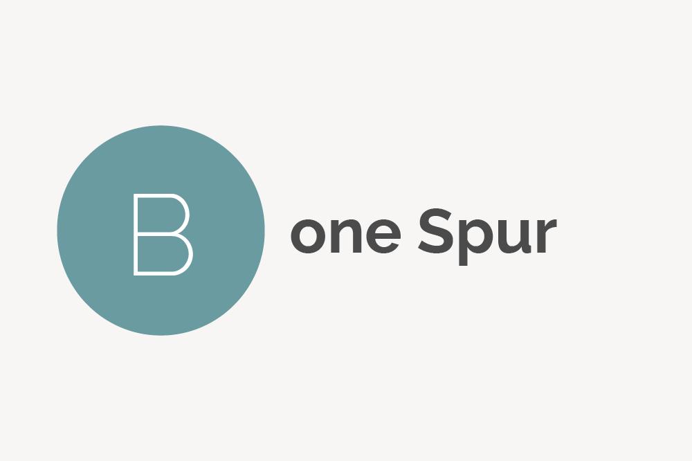 Bone Spur Definition