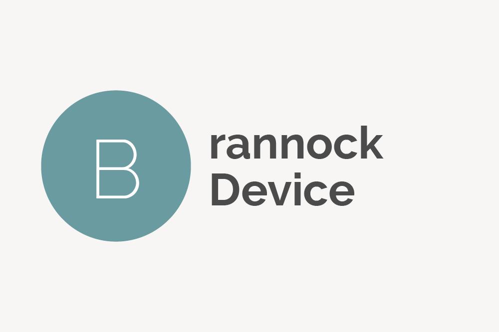 Brannock Device Definition