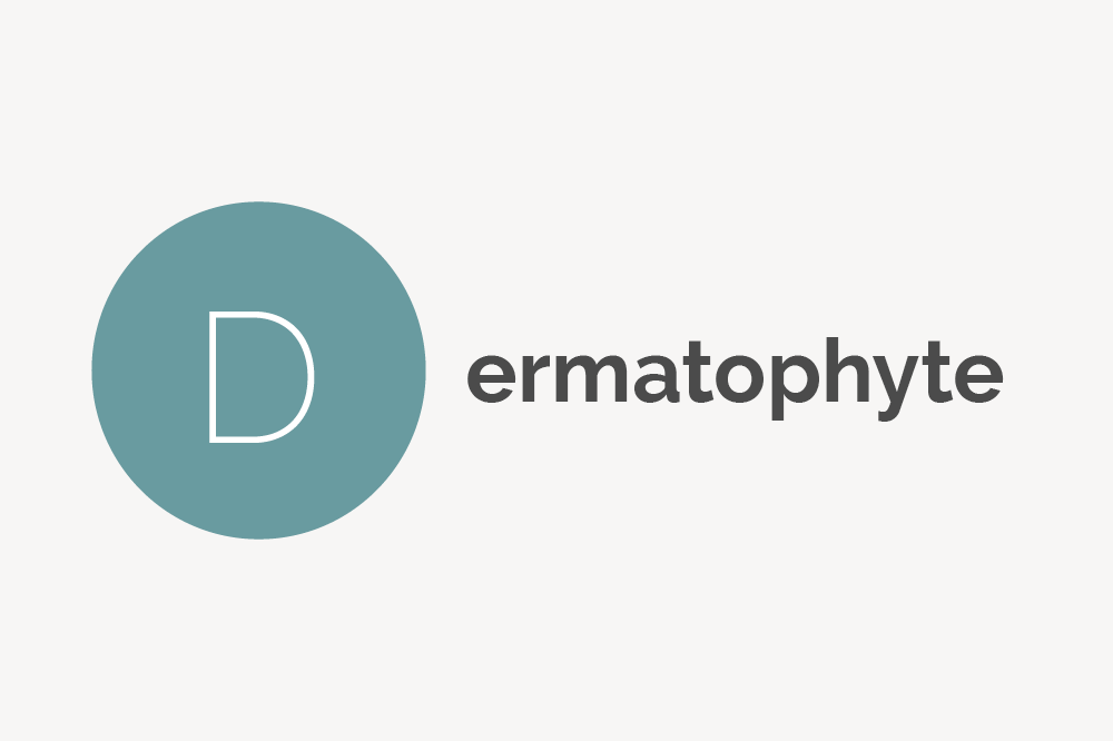 Dermatophyte Definition