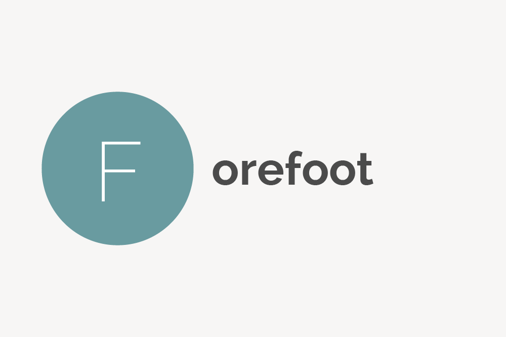 Forefoot