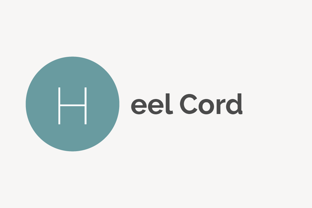 Heel Cord Definition