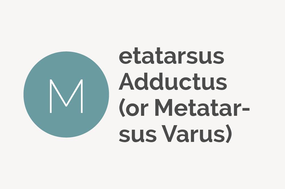 Metatarsus Adductus or Metatarsus Varus Defintion
