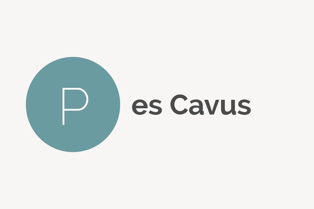 Pes Cavus Definition