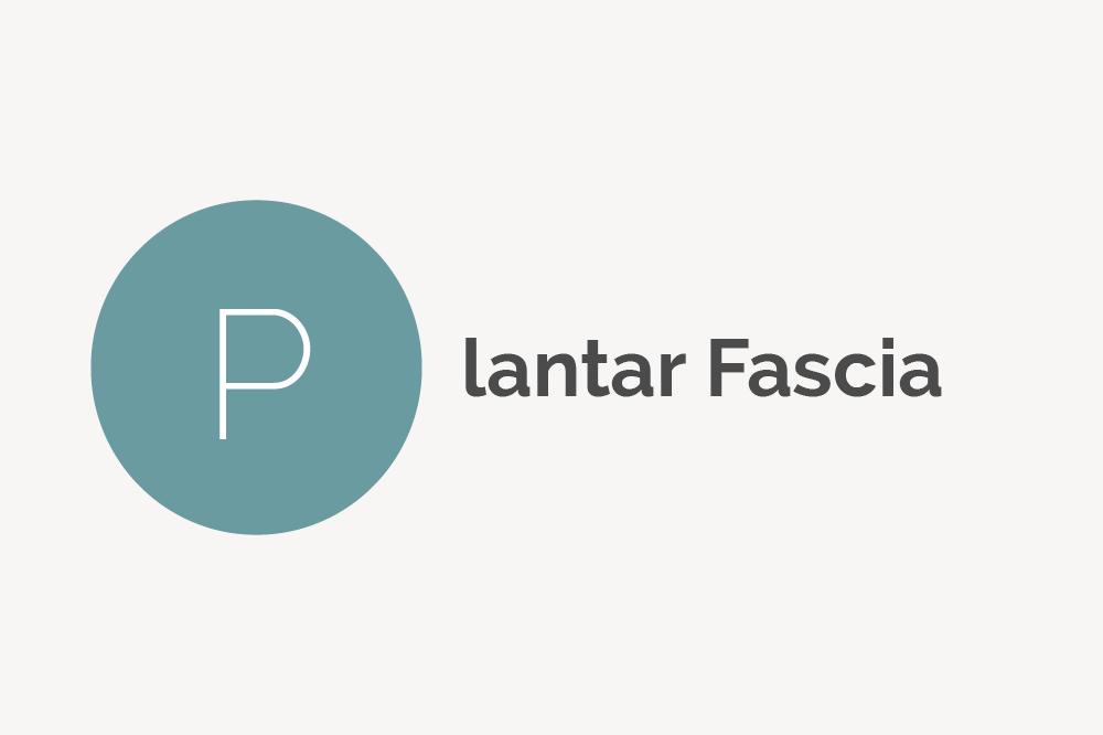 Plantar Fascia Definition