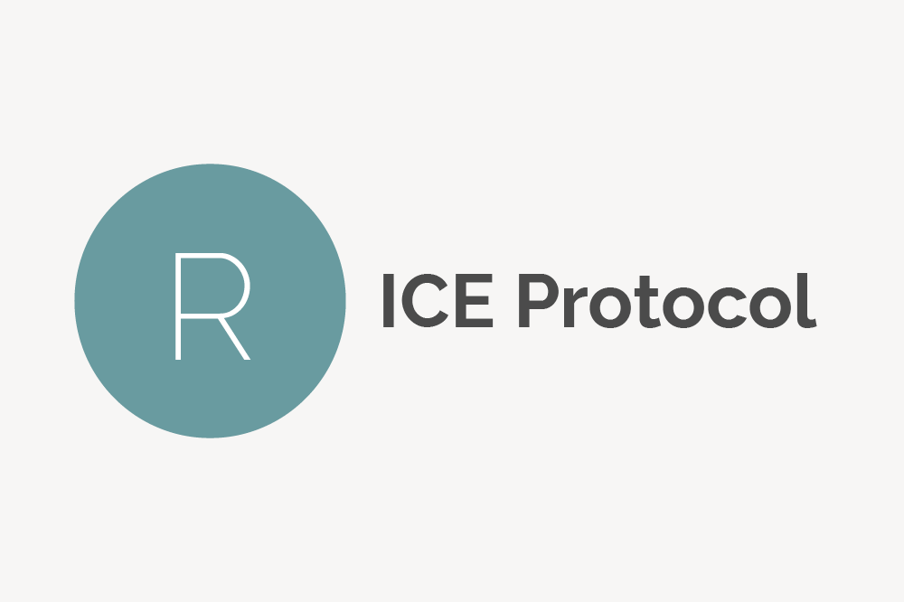 RICE Protocol Definition